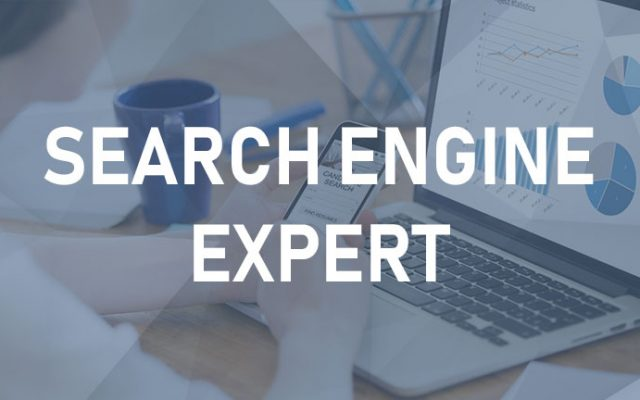 Search Engine Expert